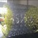 Water-roller buis